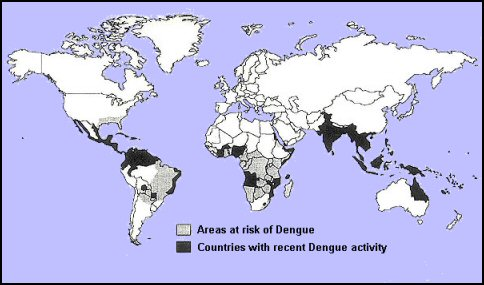 Yellow Fever  other Arboviruses  The Travel Doctor
