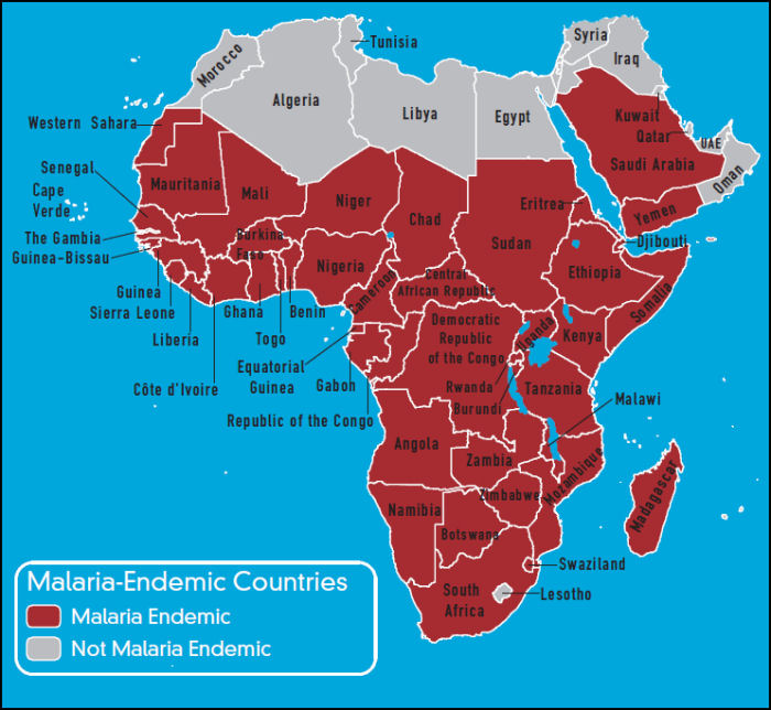 Africa   Travel Vaccines and Malaria Prophylaxis